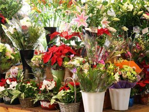 Your One-Stop Flower Shop Singapore