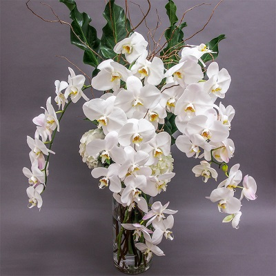 Inexpensive Flowers for Weddings