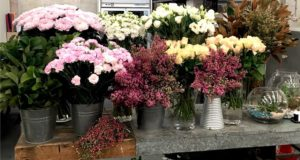 Tanglin Mall Florist Delivery